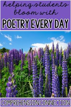 This round up post includes recommended reading, poetry analysis activites, ideas for teaching poetic devices, video and web based activities, and more. Poetry Activities, Fun Classroom Activities, Reading Comprehension Activities, Reading Fluency, Classroom Resources, Teaching Resources, Teaching Ideas, Classroom Ideas, Teaching Poetry