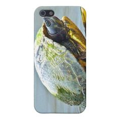 ==> reviews          	Turtle Entrance iPhone 5 Case           	Turtle Entrance iPhone 5 Case we are given they also recommend where is the best to buyDeals          	Turtle Entrance iPhone 5 Case Online Secure Check out Quick and Easy...Cleck link More >>> http://www.zazzle.com/turtle_entrance_iphone_5_case-256425891172745454?rf=238627982471231924&zbar=1&tc=terrest