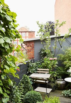Rooftop terrace as a small oasis - lots of plants and flowers, like sitting in the nature.