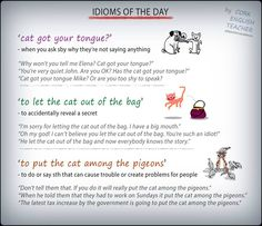 Idioms with CAT #learnenglish https://plus.google.com/+AntriPartominjkosa/posts/GVWBQiaigqe