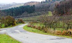 Suche Finde Entdecke  Similio, das österreichische Informationsportal  Geographie - Sachkunde - Wirtschaftskunde Portal, Sidewalk, Country Roads, Communities Unit, Landscapes, Economics, Things To Do, Searching, Side Walkway