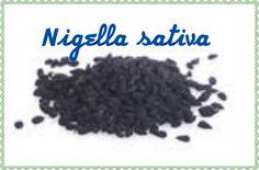 Nigella sativa its benefits and side effects notmyself50wordpress.com