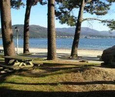 Pinar playa Broña (Outes)