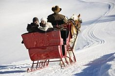 we need a sleigh for the winter :)