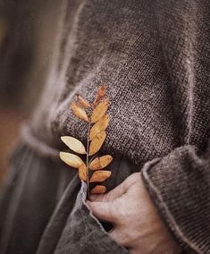 Autumn is finally here and I can't wait! Autumn Inspiration for Katharine Dever Autumn Day, Autumn Leaves, Winter, Autumn Poem, Deep Autumn, Autumn Photography, Photography Poses, Lifestyle Fotografie, Fall Inspiration