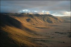 ngorongoro crater, tanzania, africa.