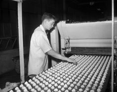 Southern Biscuit Co, Famous Foods of Virginia | photo c/o Richmond Times-Dispatch #rva