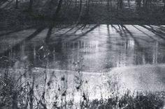 Shadows on the ice
