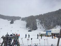 Champoluc Powder skiing