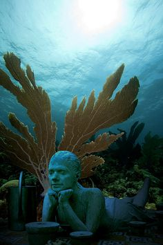 Underwater sculpture museum, Cancun, Mexico...Must Dive here!