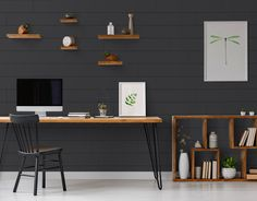 Gray Shiplap, Shiplap Wood, White Shiplap Wall, White Paneling, Shiplap Paneling, Paneled Walls, Wainscoting, Dark Accent Walls, Accent Walls In Living Room