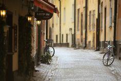 bikes and cobblestone road