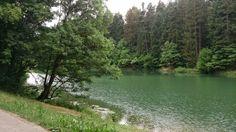 "South Germany ""pure nature"" (schwäbische Alb)"