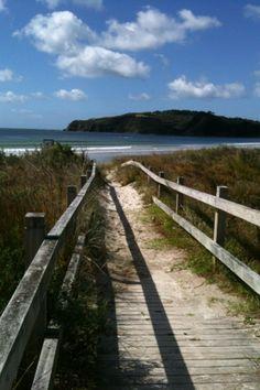 Omaha beach , NZ...I have walked that path  :-)