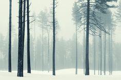 Striking images from Mikko Lagerstedt via Behance