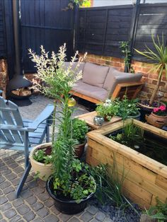 #tinygarden #cobblestone #courtyard #garden #uk #urban #raisedpond