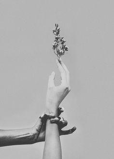 Purity & Decay (by ºº laura marii ºº) Beauty Photography, Hand Photography, Portrait Photography, Black And White Portraits, Black And White Photography, Hand Fotografie, Foto Art, White Aesthetic, Belle Photo
