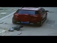 China: ¡niño vivo de milagro! Me imagino el chofer estaría chateando con su celular... http://www.1502983.talkfusion.com/es/products/