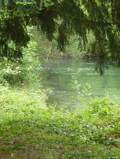 L'Isle sur la Sorgue #green #vert #tourismpaca #tourismepaca #IslesurlaSorgue #islesurSorgue #tree #landscape #paysage #water #France