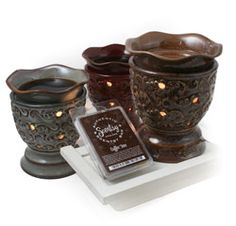 Never ever have to worry about leaving a candle burning again - love my Scentsy - thanks Peggy!
