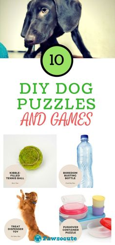 DIY dog puzzles and games Make the Best Dog puzzle toys, dog games, boxes, that are simple or challenging! Try one of these DIY Homemade dog puzzle toys. BOOST Your Dog's Mind! Games For Puppies, Brain Games For Dogs, Dog Games, Dog Training Methods, Basic Dog Training, Training Dogs, Diy Tumblr, Dog Enrichment, Diy Dog Toys