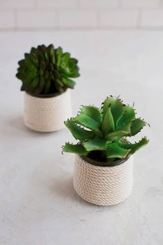 5 Easy DIY Glass Planters – A Beautiful Mess - using yoplait oui yogurt containers Crafts With Glass Jars, Jar Crafts, Succulents In Containers, Glass Containers, Diy Xmas Wrapping, Yogurt, Pots, Recycling, Glass Planter