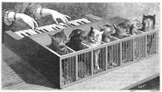 Cat-Piano: Learning To Play The Katzenklavier, A 17th Century Piano That Slashed Kittens With Sharpened Nails |