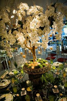 Wouldn't this Orchid Tree make for stunning table centerpieces throughout the room?!