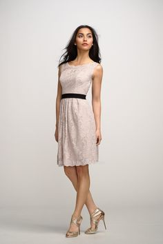 charming blush lace boat neck sleevless knee length #dress with keyhole back     $ 388.00 off $158.00