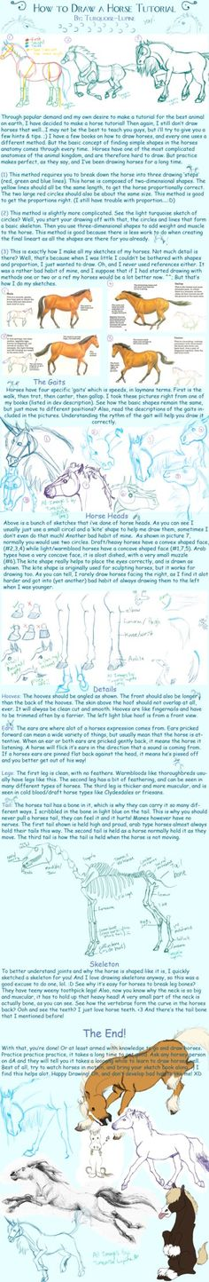 #Horse Tutorial. by Turquoise-Lupine on deviantART #drawing