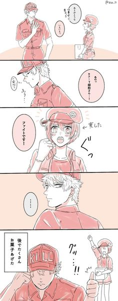Cells at work! T Cell, Red Blood Cells, I Ship It, Manga, Anime Couples, My Hero, Geek Stuff, Romantic, Cartoon