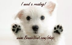E-Mail readings are fast and convenient. No appointment is necessary. Now available in both text and audio readings. Audio readings tend to have more emotion and feelings than the text version. You can submit your (2) questions anytime and from anywhere. Bonnie Vent has been providing this service since 2003. She will email your reading back to you in either text, mp3 audio file or both. People often ask if this process works as well as other methods. In some ways it is bettter. There…