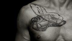 Greyhound in a hare mask by Ilya Brezinski.