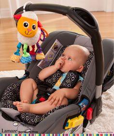 Deals For Serta Perfect Sleeper Stanberry Twin Plush Mattress