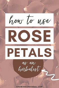 Rose Petal Recipes. Here are some of my favorite herbal preparations to make with rose petals: Rose Water - Soak fresh rose petals in water overnight. Strain and use as an astringent face wash or mouthwash, antimicrobial gargle, eye wash, or a wash. This cooling water can also be used to soothe sunburns. You can also make rose powder, rose vinegar, rose honey, and rose tincture. DIY Rose Petal Uses   Things to Do with Rose Petals   Rose Petal Recipes