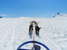 In plaats van zon zee strand met dikke winterjassen en snowboots je zomervakantie door! Op deze foto rijden we met een hondenslee door de bergen van de ongerepte wilde natuur van Alaska, na hier eerst met een helikopter door de gletsjers heen te vliegen! Meer weten over deze bestemming? http://to.kras.nl/pinterest_verenigde-staten