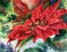 Watercolors, Watercolor Paintings, Poinsettia, Green Leaves, Note Cards, Giclee Print, Bloom, The Originals, Artist