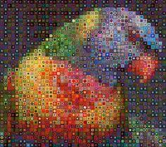 WBK Parrot by workbyknight on DeviantArt