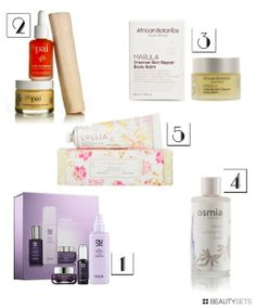 Beautysets - Will Work for Makeup's 2013 Gift Guide: Skincare