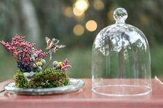 Butterfly Terrarium Kit, Real Dried Butterfly Under Glass Dome Terrarium, Woodland Miniature Scene
