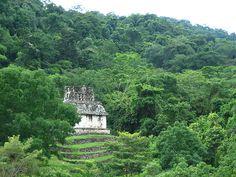[Pirámides enmedio de la selva de Palenque] 10 ruinas Mayas por @3viaje SOUTHERN MEXICO. An entire ancient city hidden in a beautiful Jungle.