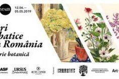 Flori salbatice din Romania - o istorie botanica, o noua expozitie la MNAR