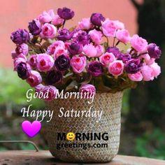 Saturday Morning Greetings, Good Morning Tuesday Wishes, Saturday Morning Quotes, Good Morning Happy Saturday, Morning Texts, Wednesday Morning, Happy Weekend, Happy Saturday Images, Cute Good Morning Images