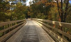You'll love spending cooler days on these laid back rail trails!