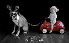 Holiday Card by KT Rae Photography Cleveland Photographer Xmas Card/ Christmas/ dog and kid xmas card