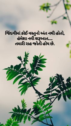 True Feelings Quotes, Good Thoughts Quotes, Deep Thoughts, Hindi Quotes, Quotations, Favorite Quotes, Best Quotes, Classy Quotes, Gujarati Quotes