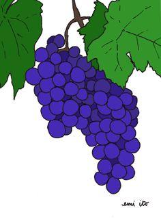 Grapes - emi ito illustration