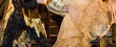 Costume detail from Birmingham Royal Ballet's production of Beauty and the Beast. Original photo: Bill Cooper