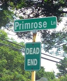 Lol this is uncalled for and unnecessary. (Plot twist: what is Suzanne Collins saw that road sign at some point between writing the hunger games and mockingjay and these 2 road signs were the inspiration for prims death. Hunger Games Memes, The Hunger Games, Hunger Games Fandom, Hunger Games Catching Fire, Hunger Games Trilogy, Catching Fire Quotes, Katniss Everdeen, Suzanne Collins, Dump A Day