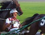 John Campbell, harness racing